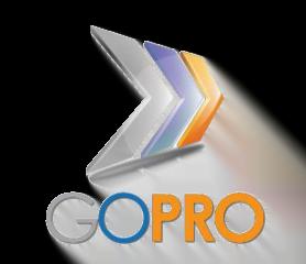 Go Pro Concierge